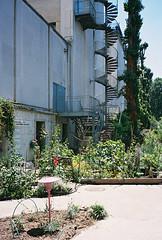 (victortsu) Tags: paris france architecture palaisdetokyo olympusmjuii kodakportra160 lacatonvassal victortsu photographersontumblr originalphotographers