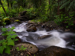 Raging Creek (iPhilFlash) Tags: creek britishcolumbia water stream rainforest canada forest coquitlam vancouver ca