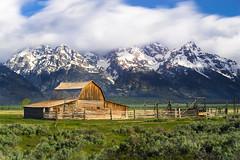 The Teton Barn in Grand Teton National Park (FengboLi) Tags: morning mountain barn grand teton