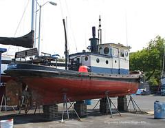 9825_Adaline (lg evans Maritime Images) Tags: tugboat tug lge adaline seattlewa onthehard lgevans maritimeimages ©lgevans seaviewwest