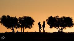 Despedida (:) vicky) Tags: sunset espaa contraluz atardecer spain olympus vicky cuenca olympusdigitalcamera esolympus vickyepla flickrvicky