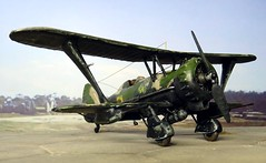 "1:72 Henschel Hs 123 A-1 trop; ""T6+DP"" of VI./2. StG, Deutsche Luftwaffe, Tmimi (Libya), July 1941 (Whif/modified Airfix kit) (dizzyfugu) Tags: africa black night sand desert conversion nacht aircraft aviation north attack 123 battle el afrika a1 stg trop nord hs wste 172 fictional airfix korps whatif modellbau libyen rlm liby alamein whif henschel schlachtflieger dizzyfugu"