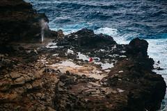 ES8A2005 (repponen) Tags: ocean nature island hawaii rocks maui blowhole monuments nakalele canon5dmarkiii