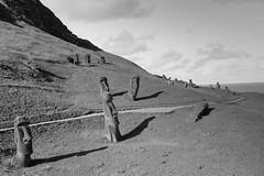 The Moai Quarry (jackkostelec) Tags: chile moai easterisland quarry rapanui
