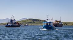 IMG_0711-1 (Nimbus20) Tags: travel holiday sunshine train scotland highlands edinburgh diesel first steam oban fortwilliam caledonian