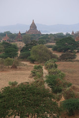 2016myanmar_0367 (ppana) Tags: bagan alodawpyay pagoda ananda temple bupaya dhammayangyi dhammayazika gawdawpalin gubyaukgyi myinkaba wetkyiin htilominlo lawkananda lokatheikpan lemyethna mahabodhi manuha mingalazedi minochantha stupas myodaung monastery nagayon payathonzu pitakataik seinnyet nyima pagaoda ama shwegugyi shwesandaw shwezigon sulamani thatbyinnyu thandawgya buddha image tuywindaung upali ordination hall