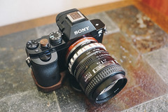 Sony A7 + Nikkor 50mm f/1.4 (Roxo15) Tags: sony nikkor a7 50mmf14 obscura 2016 appareilphoto film02 vsco sonya7 rx1r sonyrx1r