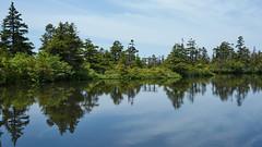 Chigoike Pond (peaceful-jp-scenery) Tags: shigakogen yakebitai chigoike pond landscape nagano       sony 99 a99 slta99v amount sal2470z variosonnart2470mmf28za carlzeiss