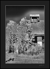 Bricker Road School (the Gallopping Geezer 3.6 million + views....) Tags: school abandoned mi rural canon decay michigan roseburg country faded forgotten worn thumb weathered schoolhouse decayed geezer 24105 2016 oneroomschool 1room 5d3 brickerroad