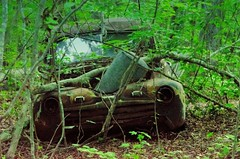 Old Catch All Ford (spartanburgphotoguild) Tags: trees ford abandoned water junk tank country rusty heater