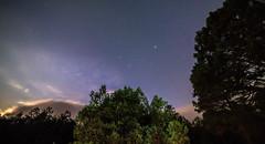 Otra noche ms (ruimc77) Tags: road trip light tree mxico night way ed mexico noche nikon low astro noturna astrophotography astrofotografia if nocturna noite milky f28 bower huasca ocampo ucm 14mm samyang as d810 higaldo rokinon astrometrydotnet:status=failed astroscape astrometrydotnet:id=nova1616374
