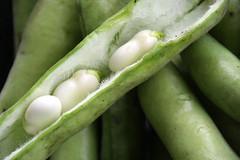 02-IMG_2589 (hemingwayfoto) Tags: bio bohne dick dickebohnen facebookalbum food gemse grn landwirtschaft lebensmittel markt saubohne schale vegetarisch vitamin
