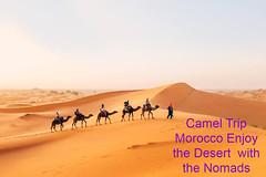 cameltrelkkinginmerzouga (Camel Trip Morocco) Tags: camp sahara night travels desert safari camel morocco marrakech nomad tours fes erg merzouga bivouac chebbi