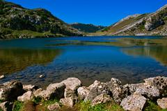 Covadonga - Lago Enol (damargo1983) Tags: light naturaleza mountains color verde luz nature water colors azul landscape lago landscapes agua colours asturias paisaje colores montaa rocas waterscape picosdeeuropa covadonga cangasdeons lagosdecovadonga parquenatural lagoenol lagoglaciar