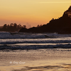 Cox Bay @Sunset, Tofino, Vancouver Island BC (PhotoDG) Tags: sunset people sun seascape color beach landscape bay bc vancouverisland telephoto cox tofino vancouverislandbc coxbay