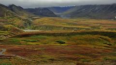 Polychrom Pass (flowerikka) Tags: usa mountains fog alaska landscape outdoor wildlife tundra alaskarange denalinp polychrompass lavahügel