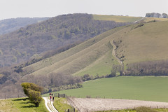 Treyford Hill and Didling Hill | Beacon Hill and back again - 7 (Paul Dykes) Tags: uk trees england landscape countryside chalk path hampshire hills mayday rolling beaconhill southdownsway treyfordhill chalkdownland warnford didlinghill