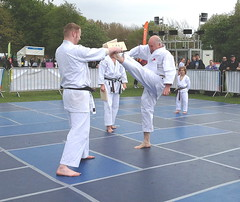 Newsham Park Festival of Sport and Activity (Anthony Beyga) Tags: karate newshamparkfestivalofsportandactivity