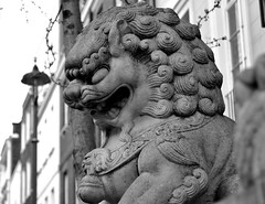 141 - Dragon of Chinatown (Ma Silva) Tags: china london statue chinatown dragon soho londres chines estatua barrio bairro chino drago