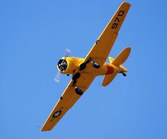 North American AT-6 Harvard/Texan (MJ_100) Tags: show airplane flying display aircraft aviation military harvard aeroplane airshow worcestershire usnavy usn texan at6 usairforce t6 snj glenview pershore northamerican throckmorton usaaf 2013 throckmortonshow2013