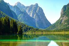 UN VIAGGIO A...... (FRANCO600D) Tags: dobbiaco lago marcita verde valpusteria pini acqua altoadige italia oasifaunistica 3787 45 197