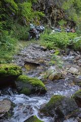 At least it's pretty (Trail Image) Tags: creek moss idaho motorcycle abbott lakecreek bmwr1200gsadventure yamahaxt250 jesseabbott joelabbott