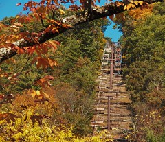 Scenic Skyride (MissyPenny) Tags: park autumn pennsylvania knoebels elysburg northumberlandcounty centralpennsylvania pdlaich missypenny