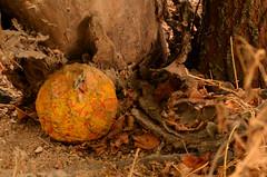Abandonado (MaPinGo) Tags: nikon objetos fotos lugares abandono balon abandonado pinel d7000 nikond7000 mapingo miguelangelpinelgonzalez miguelangelpinel