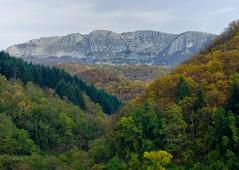Pania di corfino 4 (lotti roberto) Tags: autumn mountain tree forest day cloudy tuscany toscana autunno montagna bosco foresta vision:mountain=0853 vision:outdoor=0954 vision:clouds=0813 vision:plant=062 vision:sky=0872