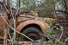 Skittle Skuttle (Industrial Relics Photography) Tags: school cute cars ford abandoned kitchen playground bernard vw reflections bug high couple cops control panel empty stage elevator beetle adorable chevy mug mansion middle neighbors timer cupboard elementary fairlane volkswagon cupboards