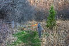 EndOfTheLine (jmishefske) Tags: park nature wisconsin fence franklin nikon path center trail milwaukee end april wehr 2014 whitnall halescorners d7100