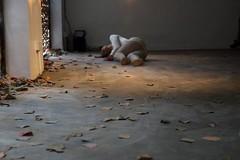 (alien frog) Tags: art digital canon hongkong ceramics clay 6d danceproject potteryworkshopgalleryhongkong artinstallationbyraychanseekwong