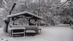 (Peter Kunr) Tags: mobile landscape photography nokia raw day snowy adobe 1020 lightroom dng lumia