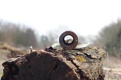 Metal/wood (jacksainsbury) Tags: nature contrast log junk natural circles bark manmade junkyard scrapmetal