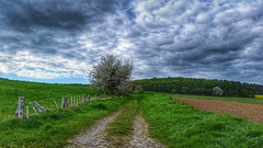 The dark side of spring (RainerSchuetz) Tags: field clouds fence spring hill may meadow agriculture darksky farmtrack cartway
