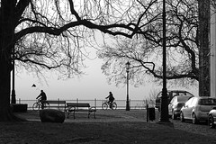 early spring silhouettes (JoannaRB2009) Tags: spring nature trees silhouettes cycling people stree city birds pock polska poland wisa vistula bw