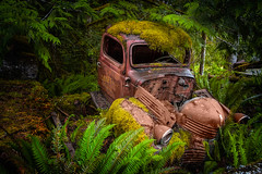 The Late Delivery (Repp1) Tags: canada forest truck moss rust bc camion ferns derelict fort mousse rouille fougres abandonn bcvancouverisland