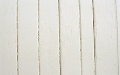 F630 (hronirheila) Tags: film 35mm nikon kodak manly sydney nikonf70 kodak400 northernbeaches ultramax quarantinestation kodakultramax kodakultramax400 qstation epsonperfectionv550