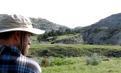 Foal watcher (prairiegirrl) Tags: northdakota wildhorses trnp sleepingwildfoal