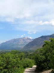 Ben Lomond in the Distance (chickadee23) Tags: flowers mountains utah hiking trails views benlomond ogden waterfallcanyontrail