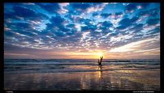 _SCH3817_Gulf of Mexico Morning (trinrn7) Tags: sunrise padreisland