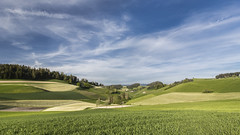 Swiss Country Side (Ben Colorblind) Tags: sky nature landscape switzerland countryside suisse swiss agriculture svizzera