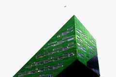 Lego (Mastahkid) Tags: windows light shadow building green bird licht university fenster nederland thenetherlands minimal universitt grn groningen schatten gebude vogel niederlande mastahkid ontourwithmyego