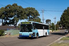 "2016-05-27 Punchbowl 4335 Peakhurst Hts (Dean ""O305"" Jones) Tags: man bus au sydney australia mo nsw co commuter punchbowl pmca 14230 4335"