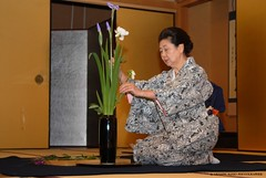 IKEBANA (http://russogiuseppefotoeviaggi.wordpress.com/) Tags: japan kyoto asia ikebana hanami tradizioni