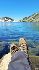 20160625_115110 (lovz2hike) Tags: lovz2hike duck lake pass trail barney pika mono county mammoth lakes coldwater campground fishing hiking backpacking wonderlust fresno inyo sierra nevada john muir wilderness
