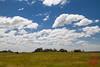 Kopje on the plain (DragonSpeed) Tags: africa landscape tanzania safari tz kopje serengetinationalpark shinyanga seroneraregion tzday03 africanwildcatsexpeditions
