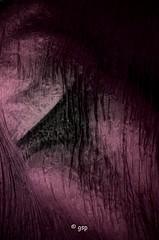 What hides under (Gunnar S Pedersen) Tags: blur hot female studio nude nice warm purple pants body sleep silk hide cover blanket form femaleform