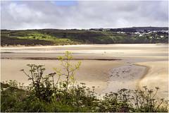 Hayle Beach (Mike Carter) Tags: beach coast cornwall sony hayle a6000