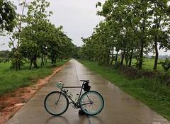 Myanmar, Yangon Region, Southern District, Twantay Township, Ta Loke Htaw Village Tract (Die Welt, wie ich sie vorfand) Tags: rain bicycle cycling yangon burma monsoon myanmar steamroller surly rangoon southerndistrict twantay yangonregion twantaytownship talokehtaw